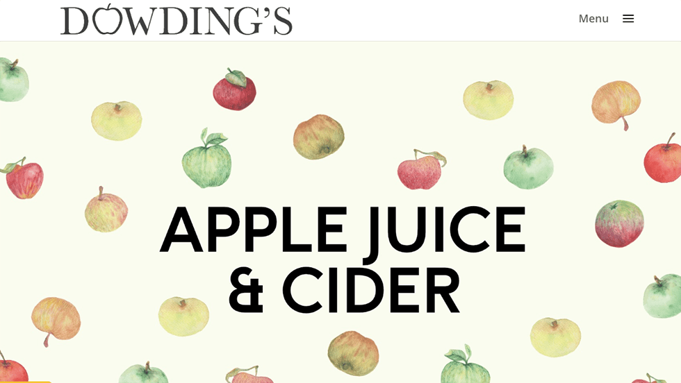applesjuice portfolio